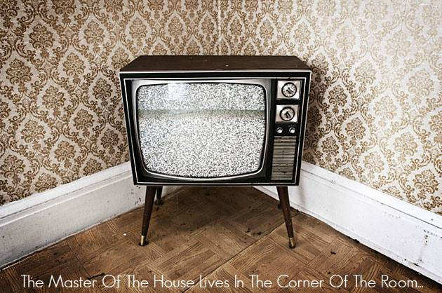 The master of the house lives in the corner of the room tv